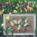 Tulpės - 2