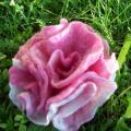 rožė rožinė