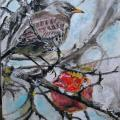 "colibri - ""Strazdas ir obuolys"""