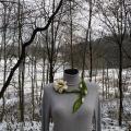 Vilnos papuošalas - Baltoji lijana