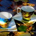 Editos-spalvos - rudens peizažas