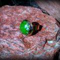 Žiedas su kaolinu, žalias