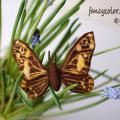 """fancycolor - Veltas drugelis """"Rudai geltonas"""""""