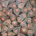 Rudeniniai dumplainiai 50x35