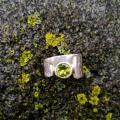 Žiedas su peridotu.