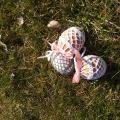 nikolia - Velykiniai kiaušiniai