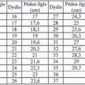 Pilkos-44 dydis