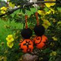 Agava - Oranžiniai 003