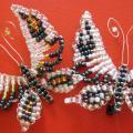 Sidabriniai drugeliai