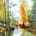Žvilgsnis į Šiškino mišką