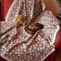 Pledai, antklodės